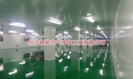 河北保定制药净化厂房gmp净化车间设计施工