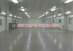 保定制药gmp净化车间、二类医疗器械净化厂房设计施工