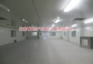 邢台食品净化车间装修 保定净化公司_河北峰帆净化工程专业设计施工