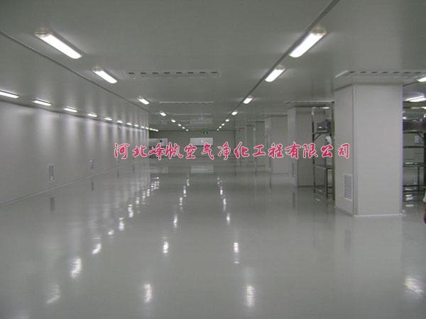河北衡水净化厂房洁净室、河北峰帆净化厂家施工